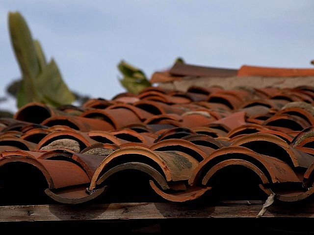 premier restoration service for terracotta roofs